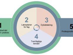 Oversikt over modulene i kompetansepakken